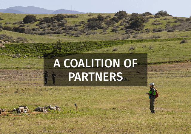 A Coalition of Partners